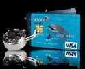 O pojištění platebních karet